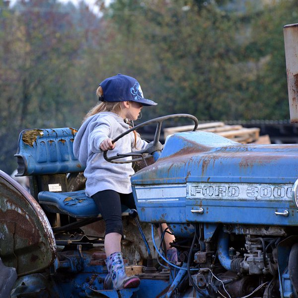 A young girl sitting at the wheel of a vintage blue farm tractor