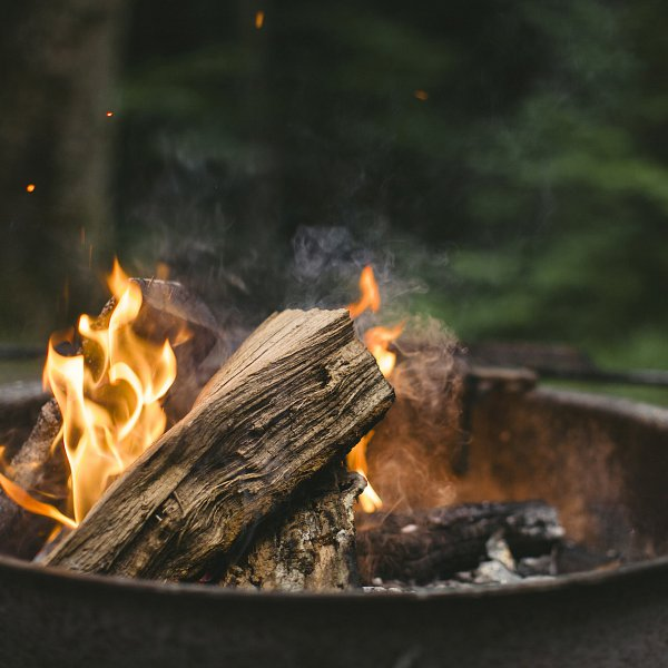 Wood burning in a campsite-style fire pit