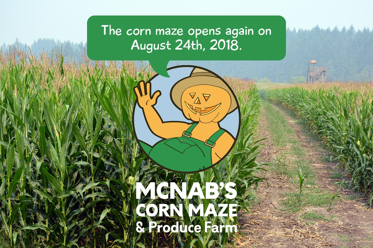 McNab's Corn Maze opens on August 24th, 2018