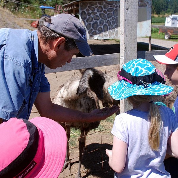 Murray McNab introducing a group of children to one of the farm animals