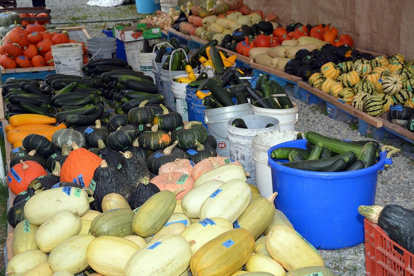 The roadside McNab's Produce Stand, chocked full of fresh veggies