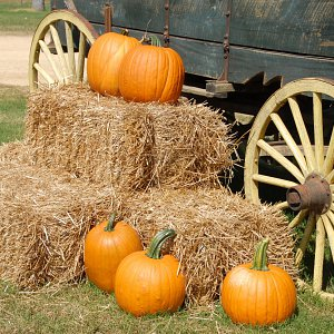 Pumpkins sitting on bales of hay, next to a wagon