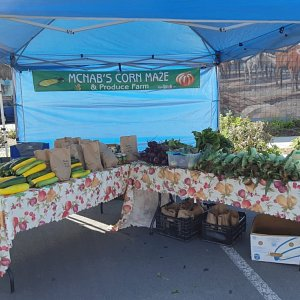 McNab's Produce stand at the Chemainus Farmer's Market in 2019