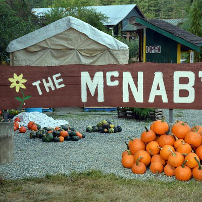 mcnabs-farm-produce-stand-09