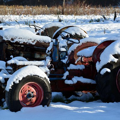 snow-days-at-mcnabs-farm-08