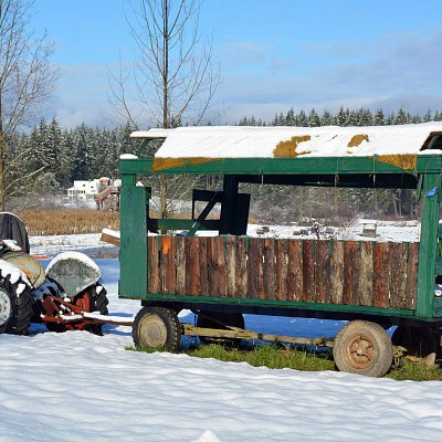 snow-days-at-mcnabs-farm-10